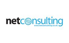 NetConsulting